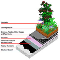 --Green Roof System Image--