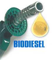 -Biodiesel-